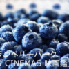 グランベリーパーク 109シネマズ(109CINEMAS GRANDBERRYPARK) 映画館・座席の快適度・おすすめ
