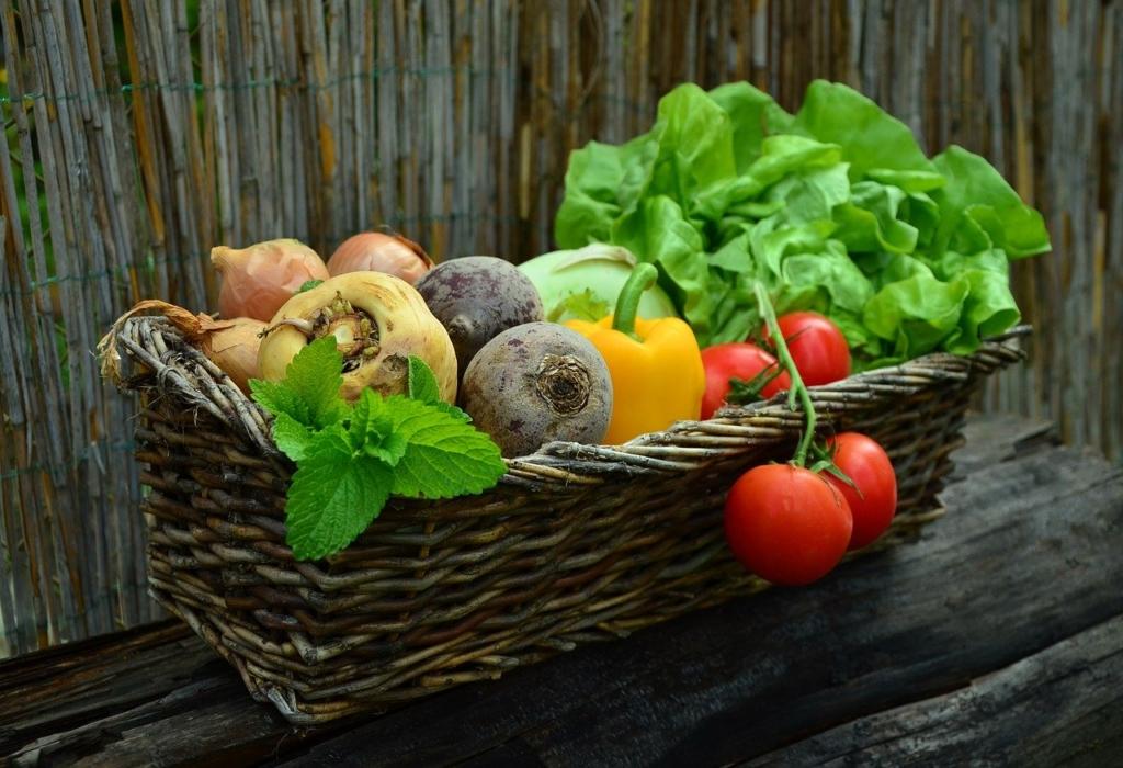 野菜・料理イメージ