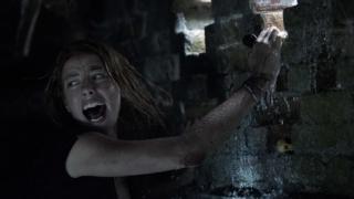 『クロール -凶暴領域-』イメージ画像