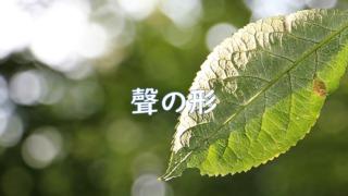 『聲の形』イメージ画像