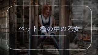 『ペット 檻の中の乙女』イメージ画像