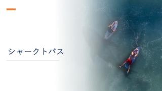 『シャークトパス』イメージ画像